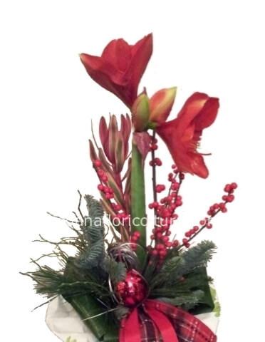 Mazzo Di Fiori E Piante.Mazzo Di Fiori Natalizio Fiori A Oleggio Ikebana Floricoltura